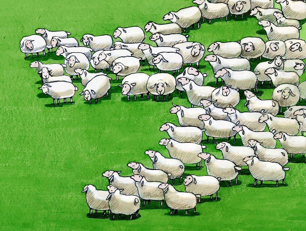 Great Sheep Panic of 1888