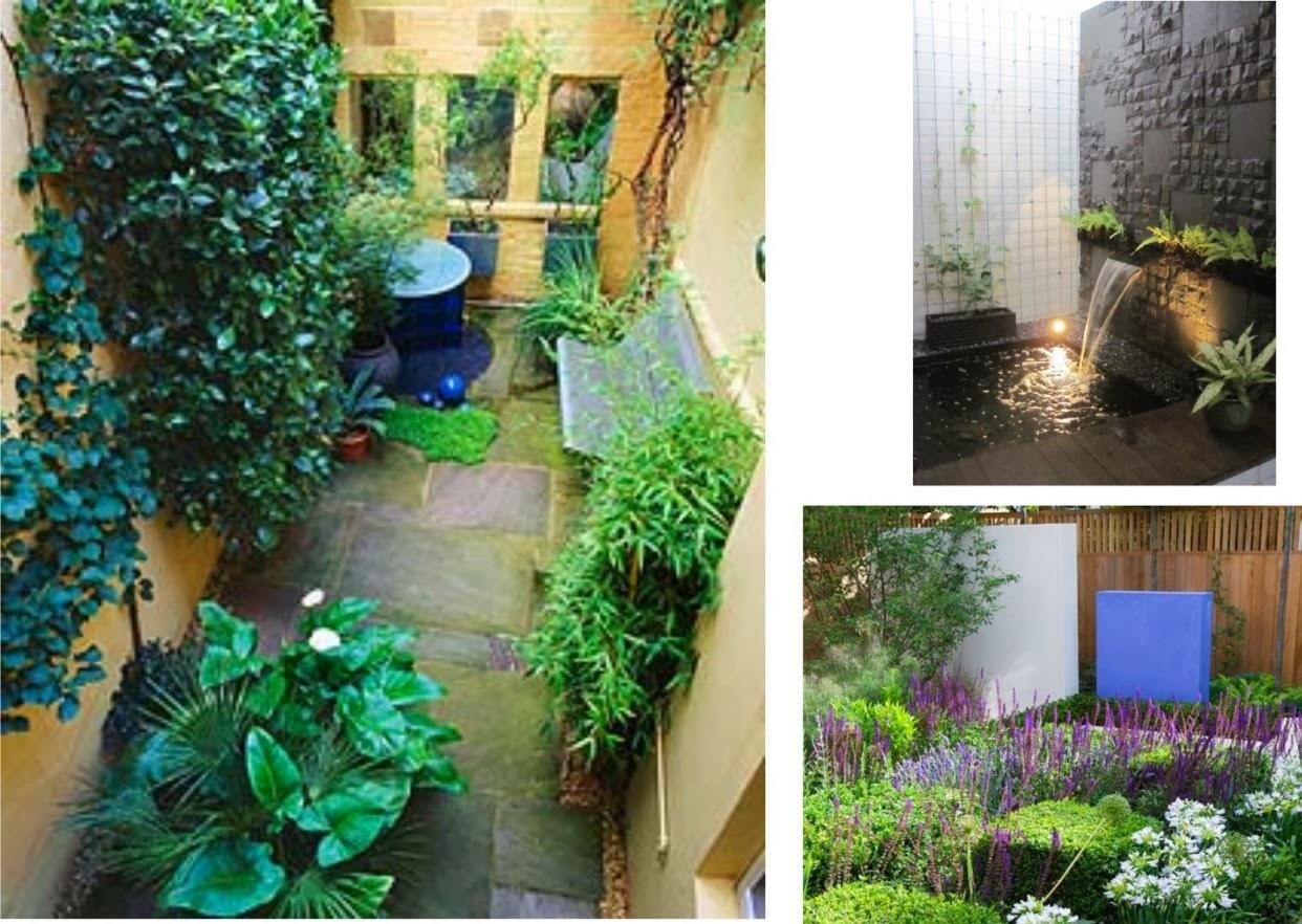 Cara merawat dan membuat taman rumah mungilLayanan Jasa