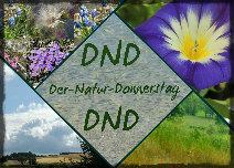 https://kreativ-im-rentnerdasein.blogspot.com/2020/03/der-natur-donnerstag-dnd_25.html
