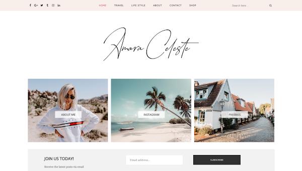 Amara Responsive Fashion/Travel Blogger Template
