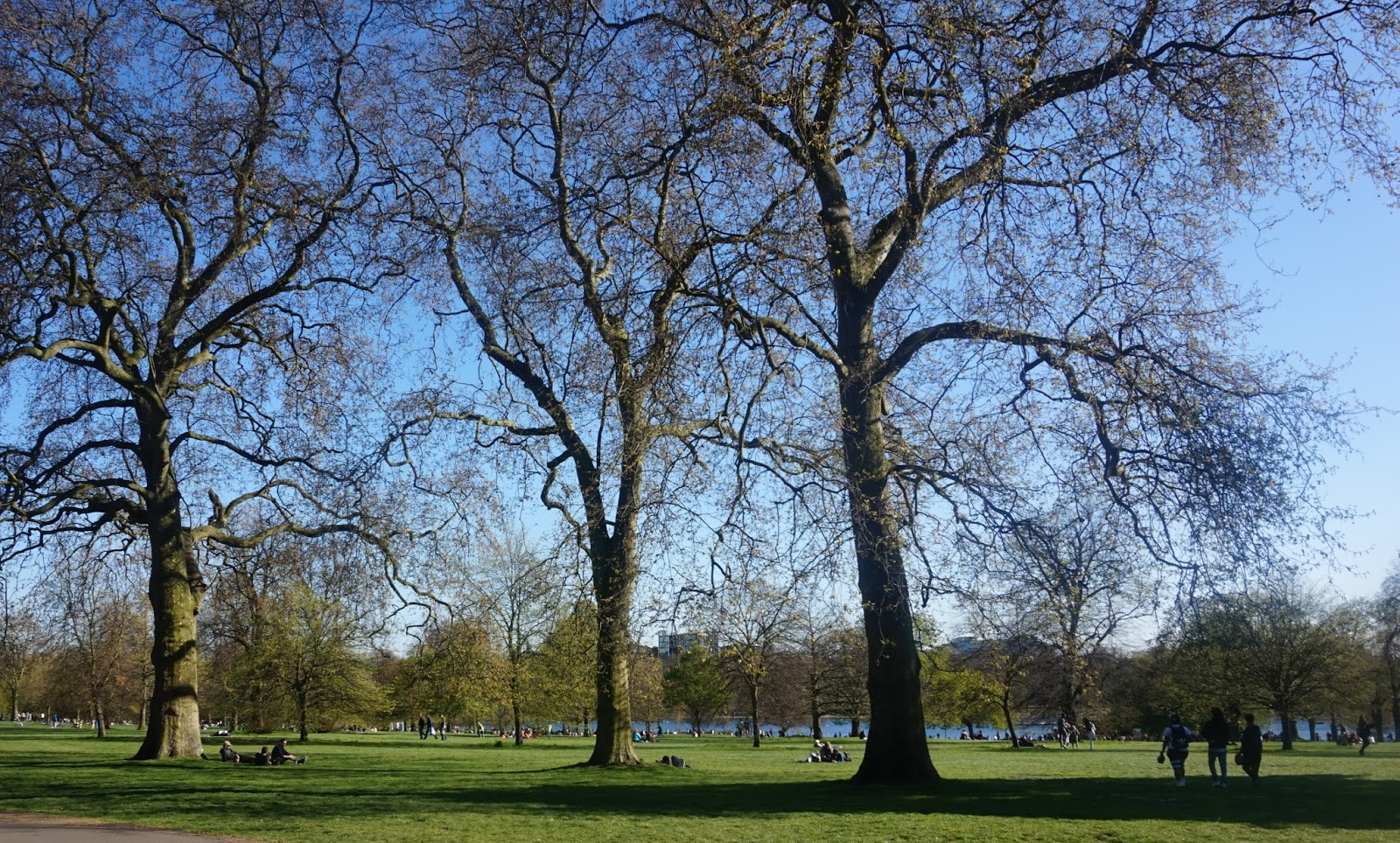 A Glorious Spring Day in London #2