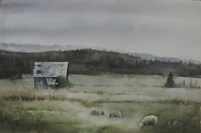 watercolour painting of a field and sheep and barn in the summer by Adam stolterman
