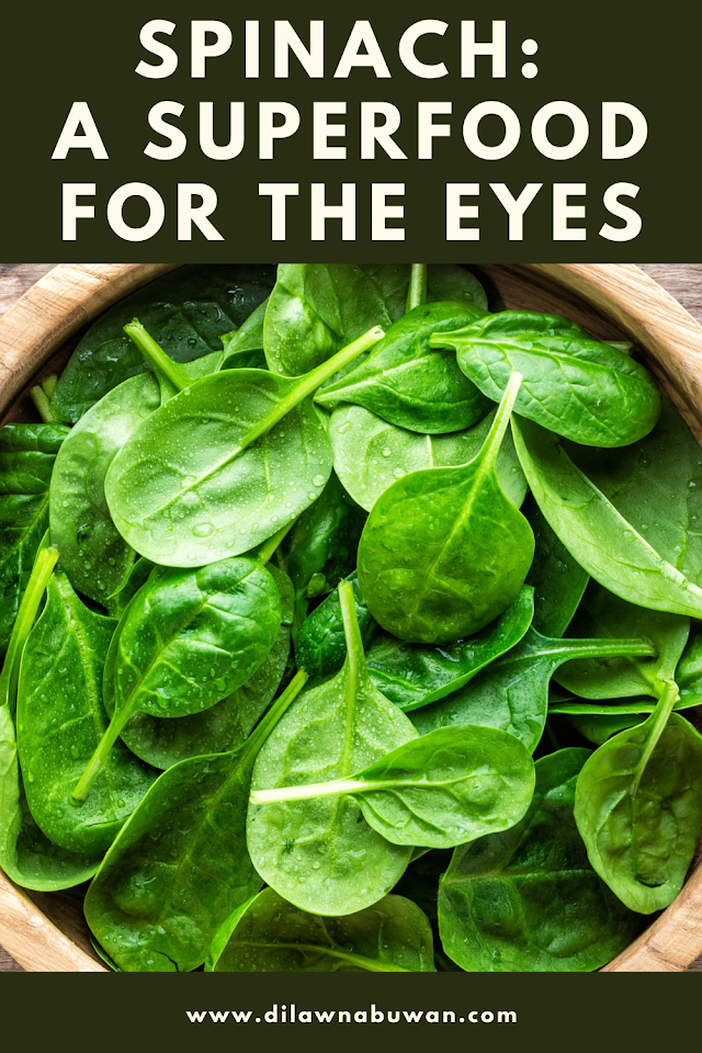 Spinach: A Superfood For The Eyes