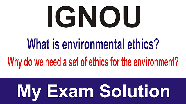 What is environmental ethics? Why do we need a set of ethics for the environment