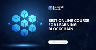 Learn Blockchain Didactic Full Course in Online with Scratch Examples