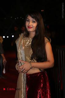 Actress Vennela Stills in Lehenga Choli at Gemini TV Puraskaralu 2016 Event  0039.JPG