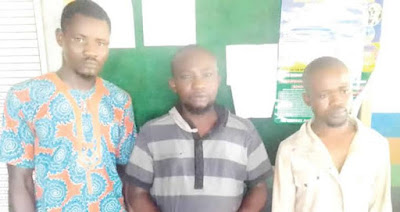 Police Arrests Ogun Land-grabbers For Shooting Workers On Site (Photo)