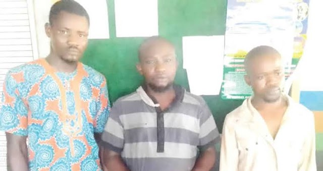 Ogun State land-grabbers arrested for shooting workers on site