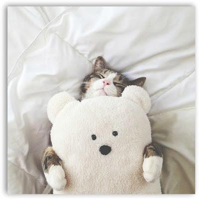 Secretos para dormir mejor