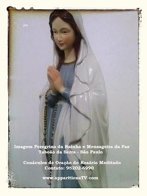 Image result for image peregrina jacarei