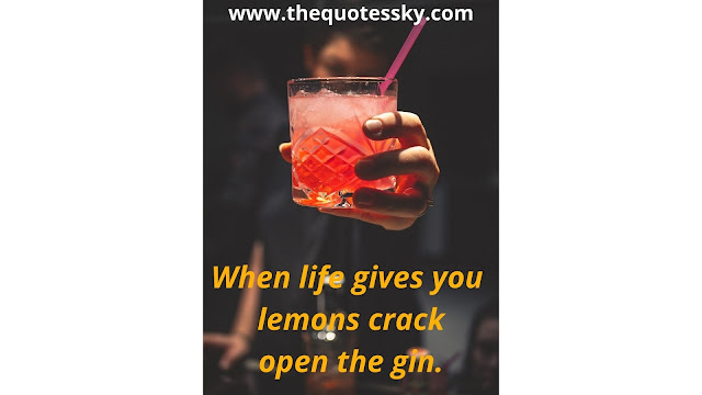 100+ Gin Quotes for Instagram Also Captions and Sayings