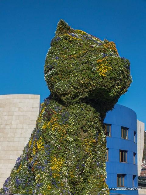 Qué ver en País Vasco Bilbao