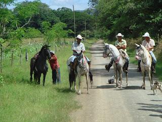 costa rica hevonen vaquero ratsastus matkailu