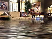 Think about Water Damaged Carpet Cleaning Related to Water Damaged Carpets