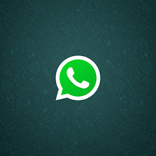 WhatsApp Messenger for Android | Download WhatsApp 2.16.182 for Android
