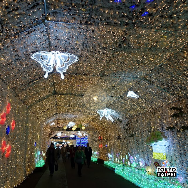 【時之栖Illumination】穿過燈海隧道賞各式花燈 再看音樂水舞燈光秀