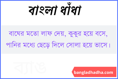 Bangla Dhadha Image