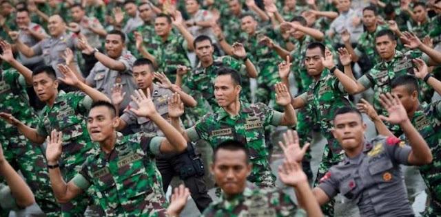 Fungsi Tugas TNI dan Polri