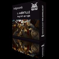 Download Laventille Rhythm Section KONTAKT Library