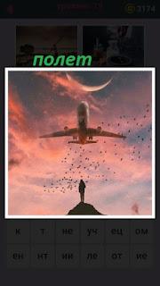 в небе летит самолет и много птиц вслед за ним