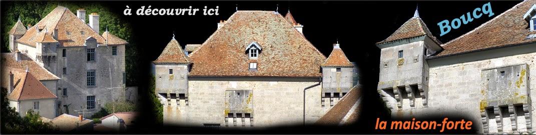 http://patrimoine-de-lorraine.blogspot.fr/2014/06/boucq-54-la-maison-forte.html