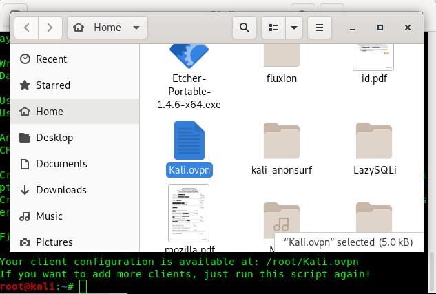 OpenVPN config file