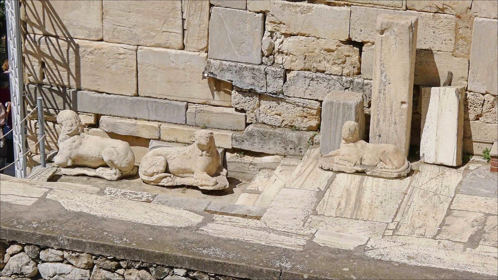 Acropolis Dogs
