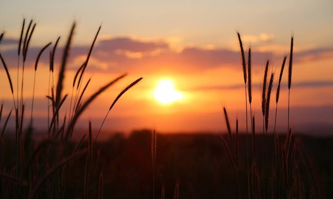 Θερινό ηλιοστάσιο τη Δευτέρα - Η μεγαλύτερη ημέρα του 2021