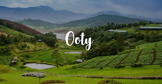 Top Restaurant in Ooty