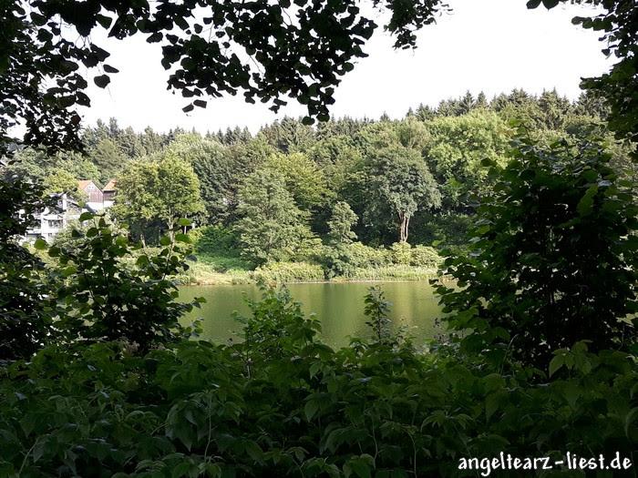 Hahnenklee im Harz