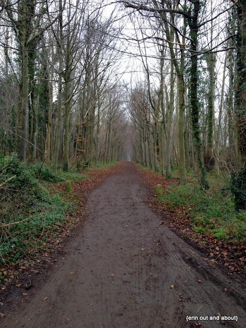 {ErinOutandAbout} Wandlebury Park
