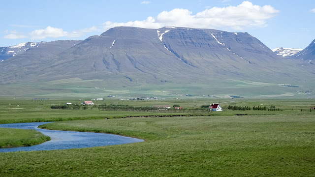 Out in the wild iceland