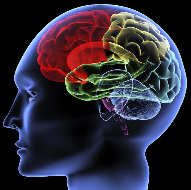 10 Fenomena Aneh yang Terjadi Dalam Pikiran Manusia