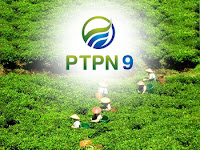 PT Perkebunan Nusantara IX - Recruitment For Fresh Graduate Management Trainee Program PTPN Group February 2017