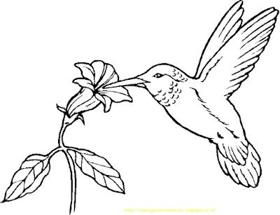 Gambar Mewarnai Burung - 15