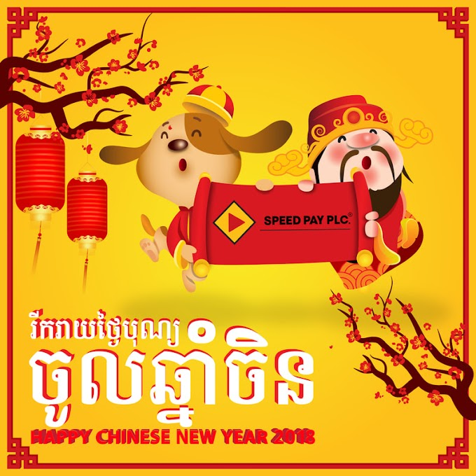 Chinese New Year 2019 free vector templates