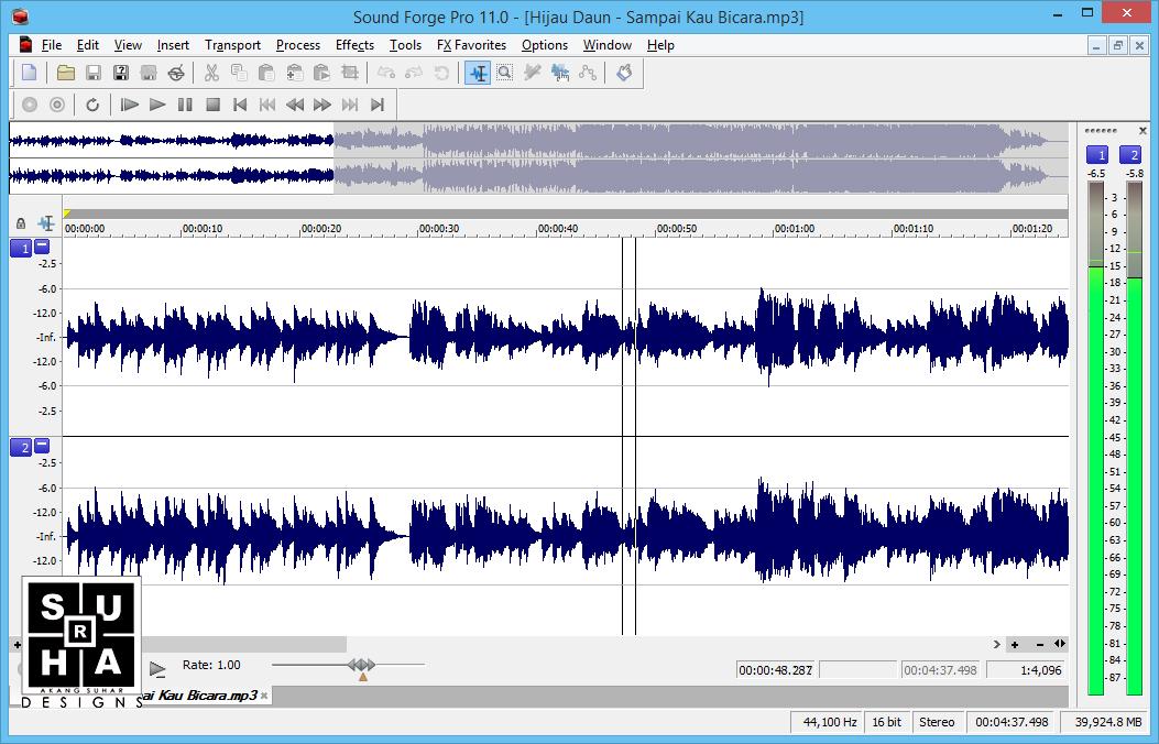 MAGIX Sound Forge Pro 11.0 Build 341