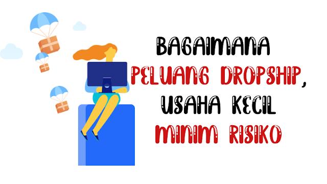 bagaimana-peluang-dropship