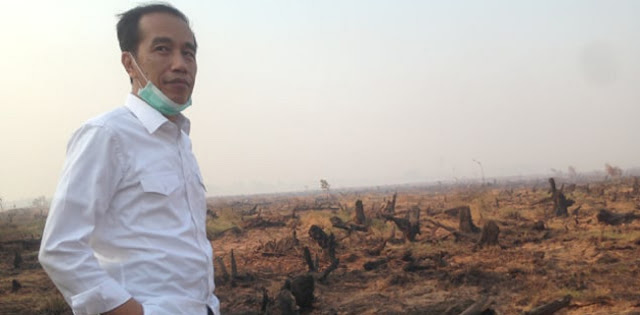 Walhi: Jokowi Jangan Cuma Cuap-cuap Soal Karhutla, Masyarakat Rugi Besar