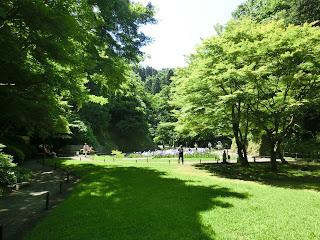 明月院本堂後庭園