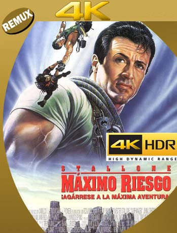 Riesgo total (1993) 4K REMUX 2160p UHD [HDR] Latino [GoogleDrive]