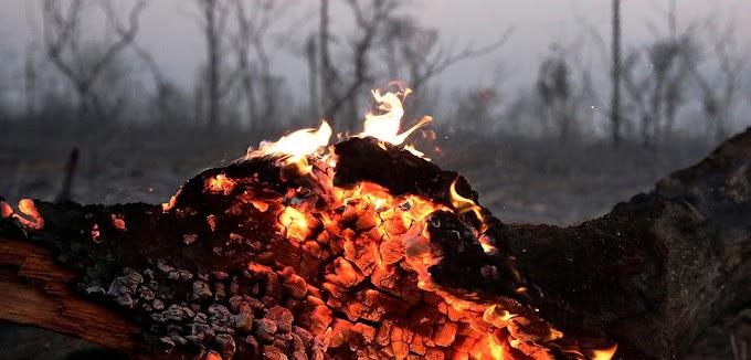 Por conta de queimadas e desmatamento, Amazônia deixará de produzir chuva daqui a dois anos, diz pesquisadora
