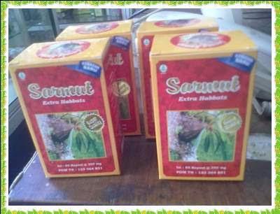 Kapsul Sarang Semut New01042013848 003