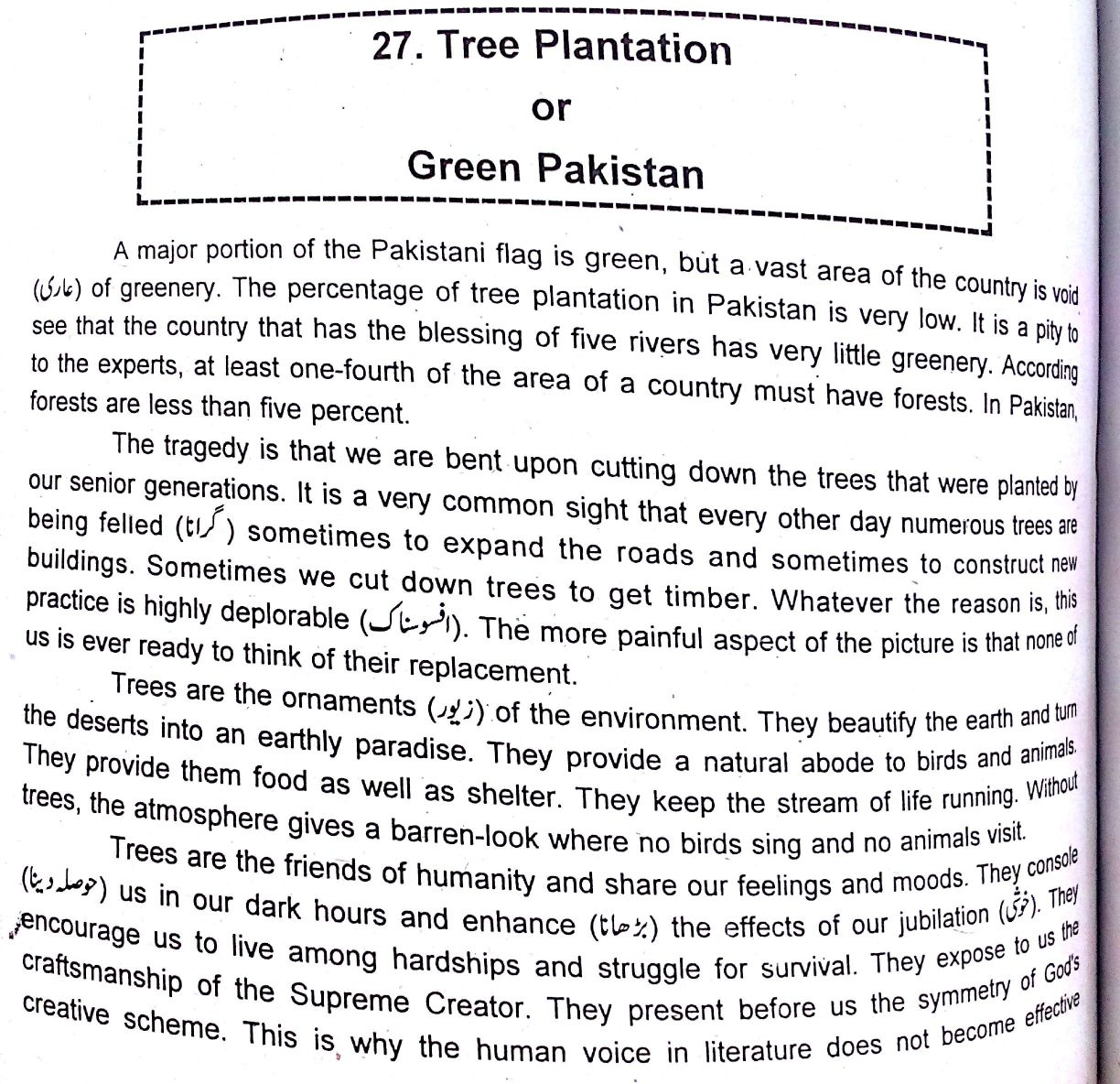 Advantage of tree plantation of essay