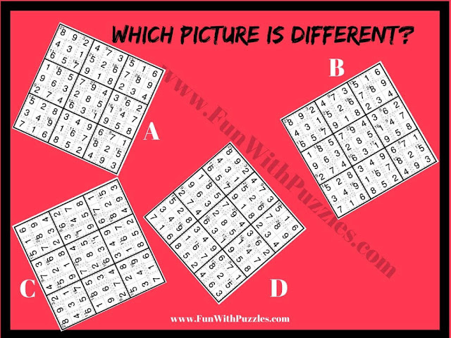 Killer Sudoku Odd One Out Picture Puzzle