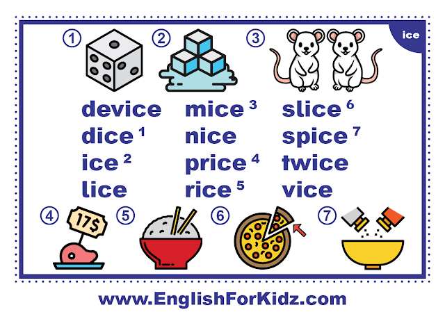 ice family words - printable flashcard with pictures