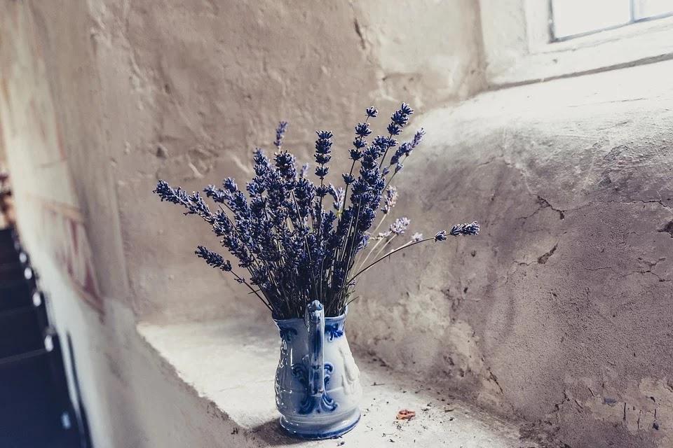 Flores de lavanda azul añil en un jarrón
