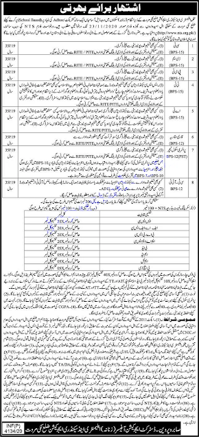 elementary-and-secondary-education-kpk-jobs-application-form