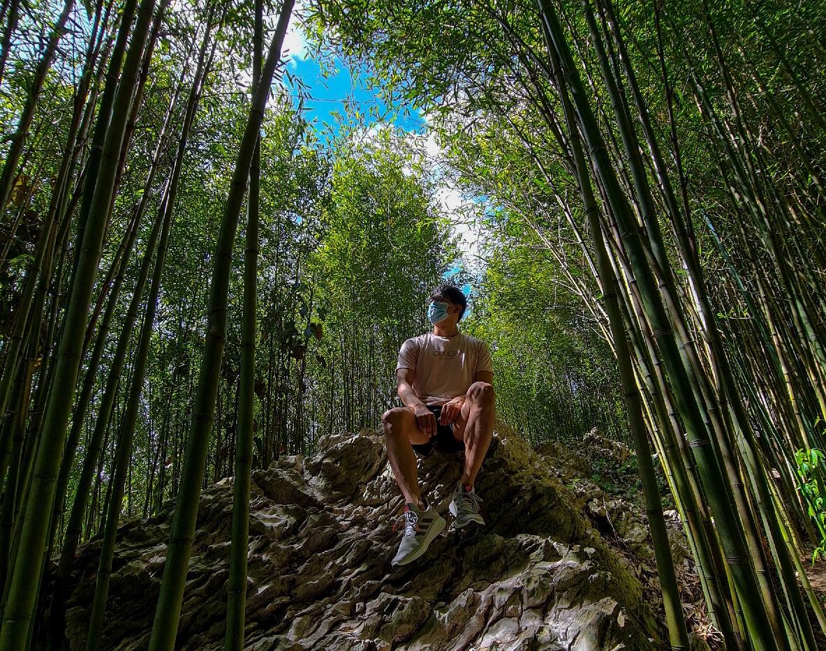 Arashiyama Bamboo Forest Mirador Heritage