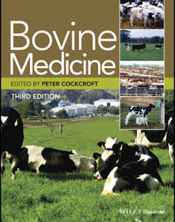 Bovine Medicine 1st Edition